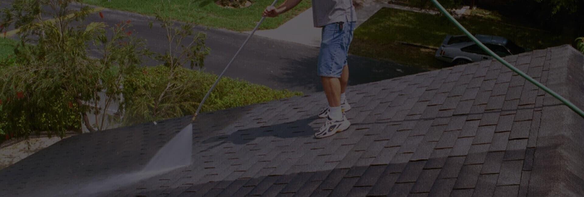 Roof Washing